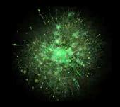 FWX-L GREEN 2D 300X290.png